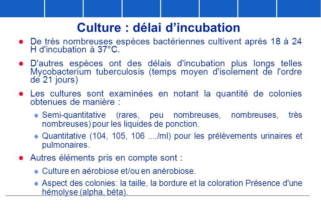 Culture : délai d'incubation  De très nombreuses espèces bactériennes cultivent après 18 à 24 H d'incubation à 37°C.  D'autres espèces ont des délai