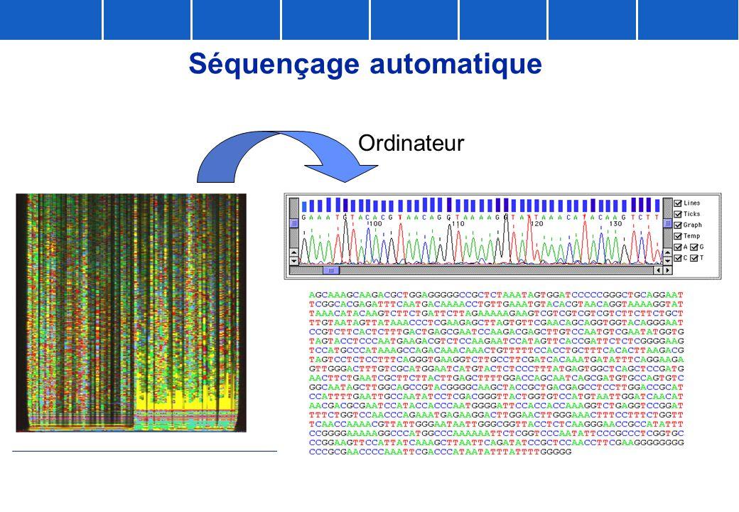 Ordinateur Séquençage automatique