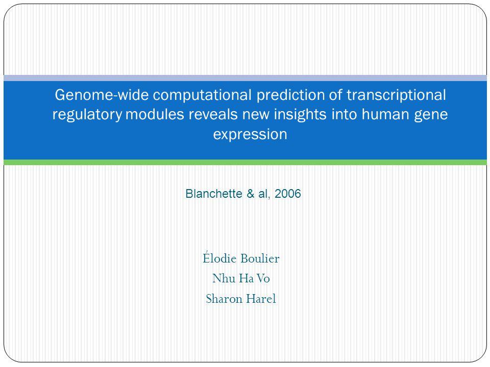 Rappel sur la transcription et la traduction d'un gène