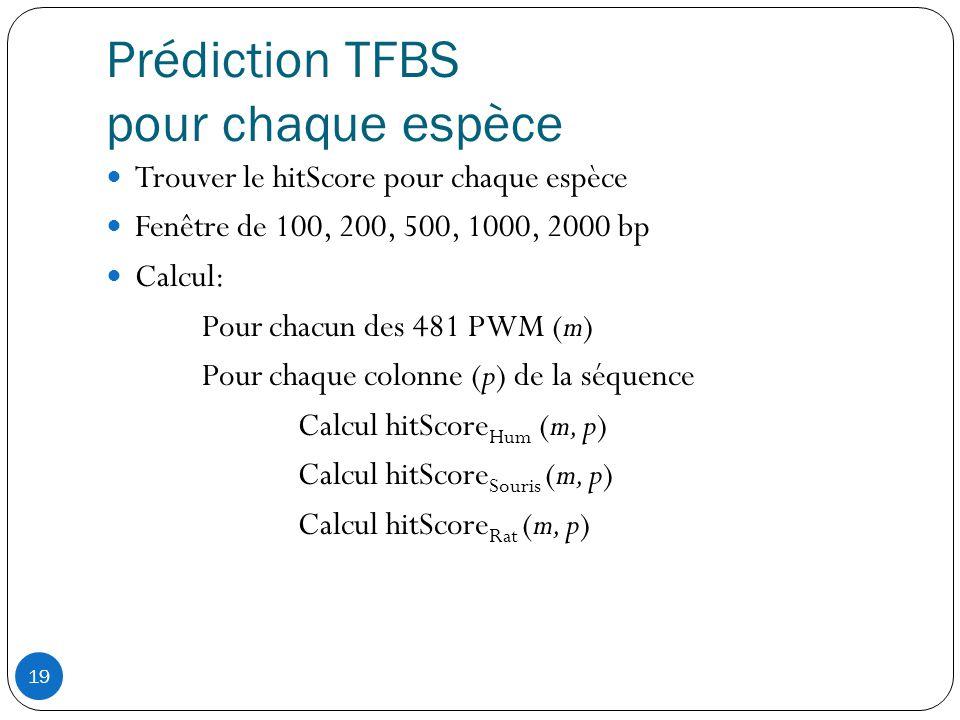19 Prédiction TFBS pour chaque espèce  Trouver le hitScore pour chaque espèce  Fenêtre de 100, 200, 500, 1000, 2000 bp  Calcul: Pour chacun des 481 PWM (m) Pour chaque colonne (p) de la séquence Calcul hitScore Hum (m, p) Calcul hitScore Souris (m, p) Calcul hitScore Rat (m, p)