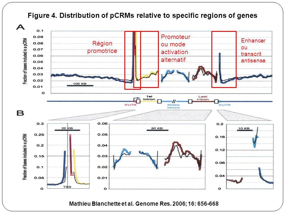 Mathieu Blanchette et al.Genome Res. 2006; 16: 656-668 Figure 4.