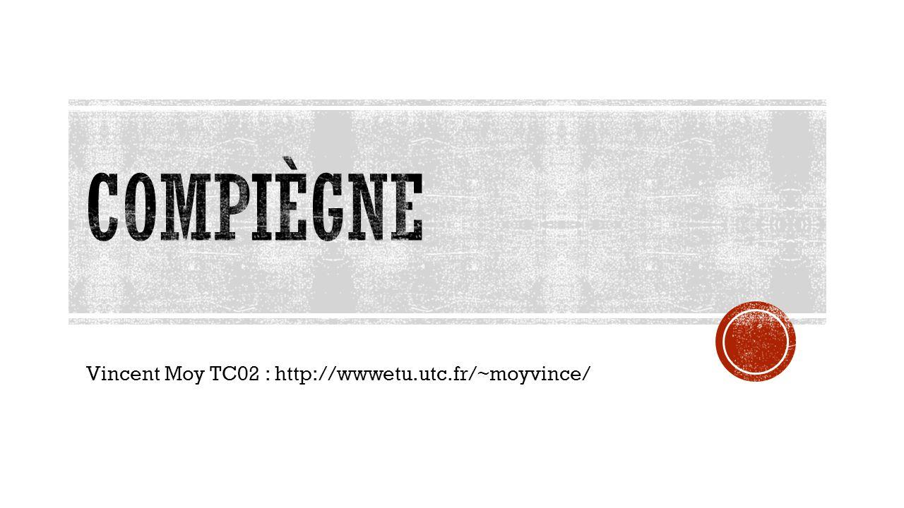 Vincent Moy TC02 : http://wwwetu.utc.fr/~moyvince/