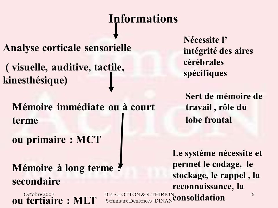Octobre 2007Drs S.LOTTON & R.THIRION Séminaire Démences -DINAN 6 Informations Analyse corticale sensorielle ( visuelle, auditive, tactile, kinesthésiq