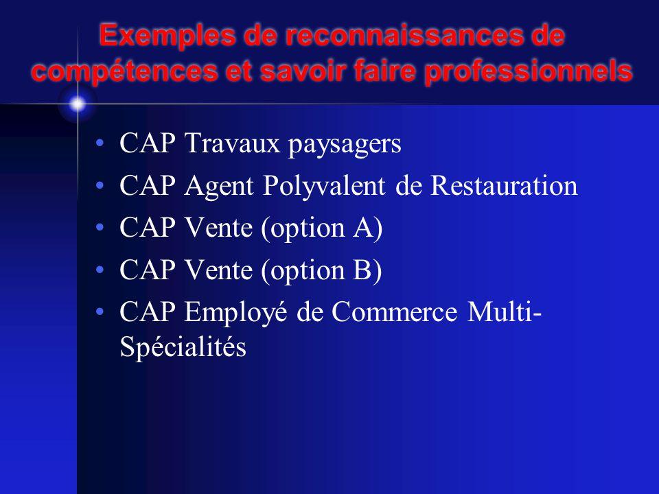 Exemples de reconnaissances de compétences et savoir faire professionnels •CAP Travaux paysagers •CAP Agent Polyvalent de Restauration •CAP Vente (option A) •CAP Vente (option B) •CAP Employé de Commerce Multi- Spécialités