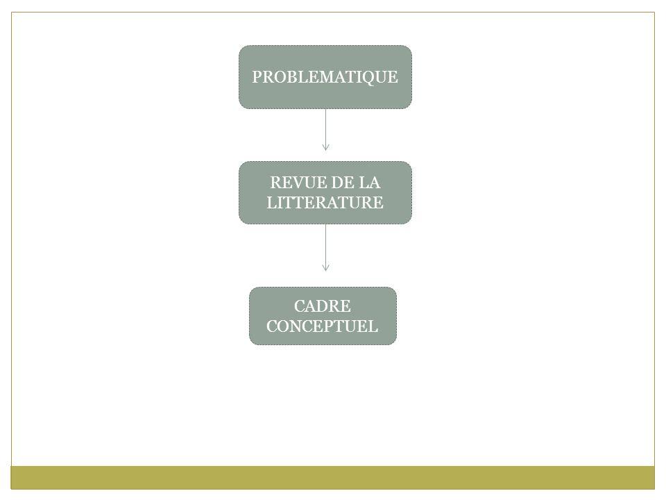 PROBLEMATIQUE REVUE DE LA LITTERATURE CADRE CONCEPTUEL