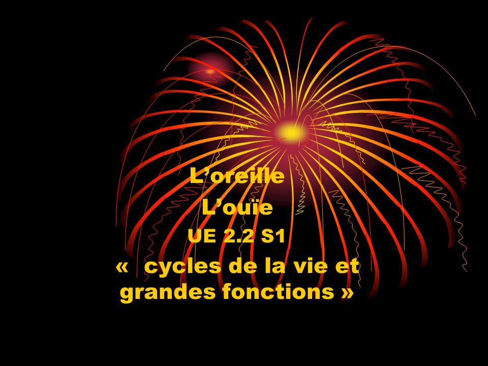 L'oreille L'ouïe UE 2.2 S1 « cycles de la vie et grandes fonctions »