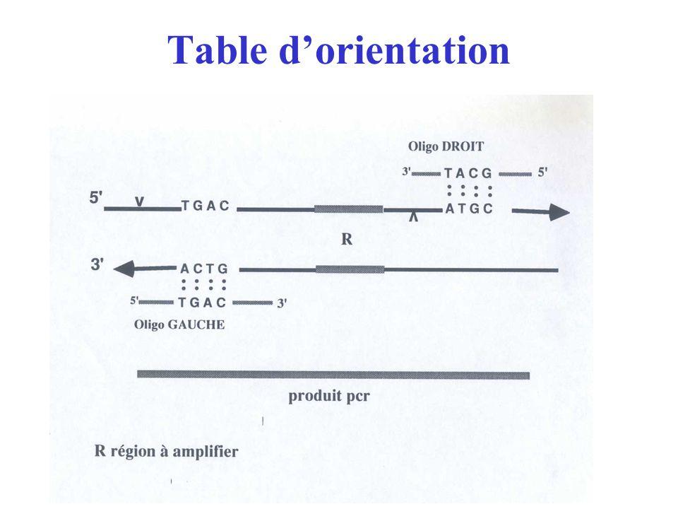 Table d'orientation