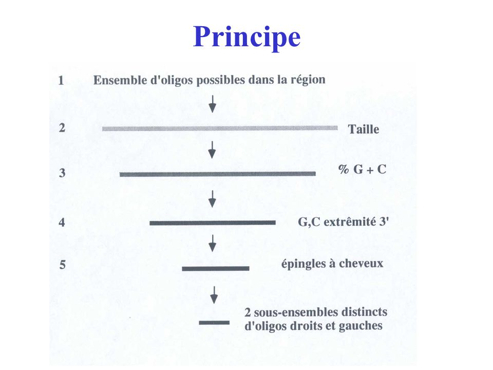 Température La température de fusion du produit PCR (Tmpcr) est calculée suivant la relation suivante applicable à des molécules de plus 50 nucléotides [5] Tmpcr = 81.5 + 16.6 * log[Na+] + 0.41(GC) où [Na +] désigne la concentration en sels et GC le pourcentage G+C