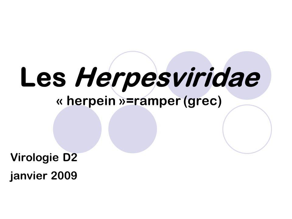 Classification : ordre des Herpesvirales familles: Genres: -Alloherpesviridae Ictalurivirus -Herpesviridae Alphaherpesvirinae: Simplexvirus Varicellovirus Iltovirus Mardivirus Betaherpesvirinae: Cytomegalovirus Muromegalovirus Proboscivirus Roseolovirus Gammaherpesvirinae: Lymphocryptovirus Macavirus Percavirus Rhadinovirus - Malacoherpesviridae Ostreavirus