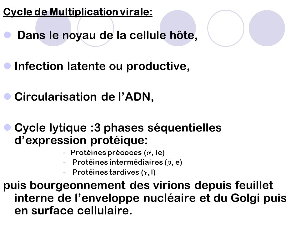 (Pasquier et al, 2005)