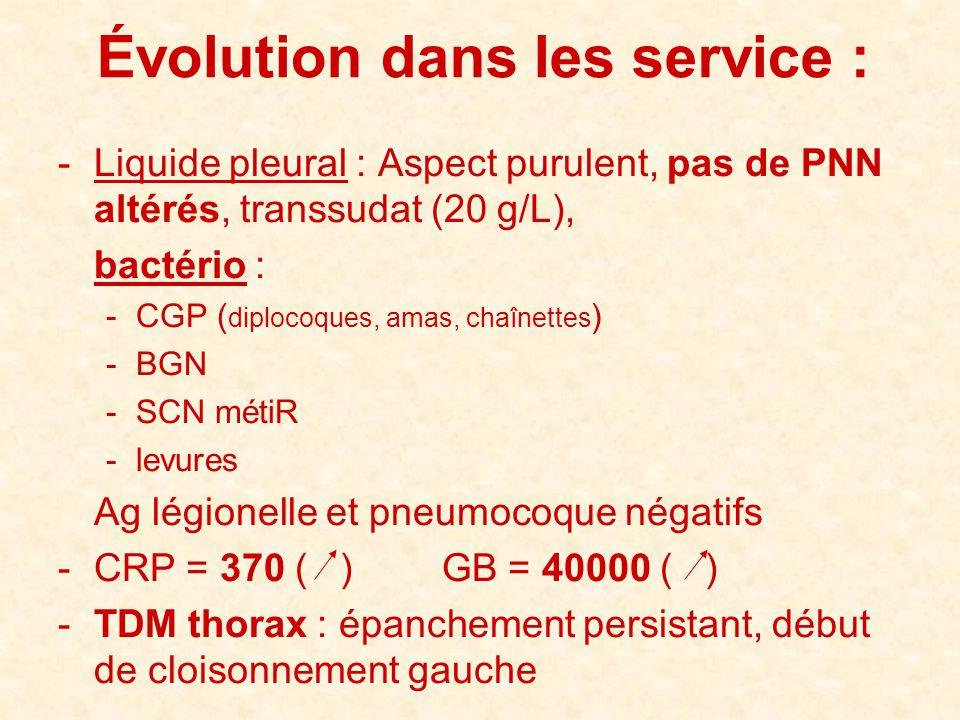 -Liquide pleural : Aspect purulent, pas de PNN altérés, transsudat (20 g/L), bactério : -CGP ( diplocoques, amas, chaînettes ) -BGN -SCN métiR -levure