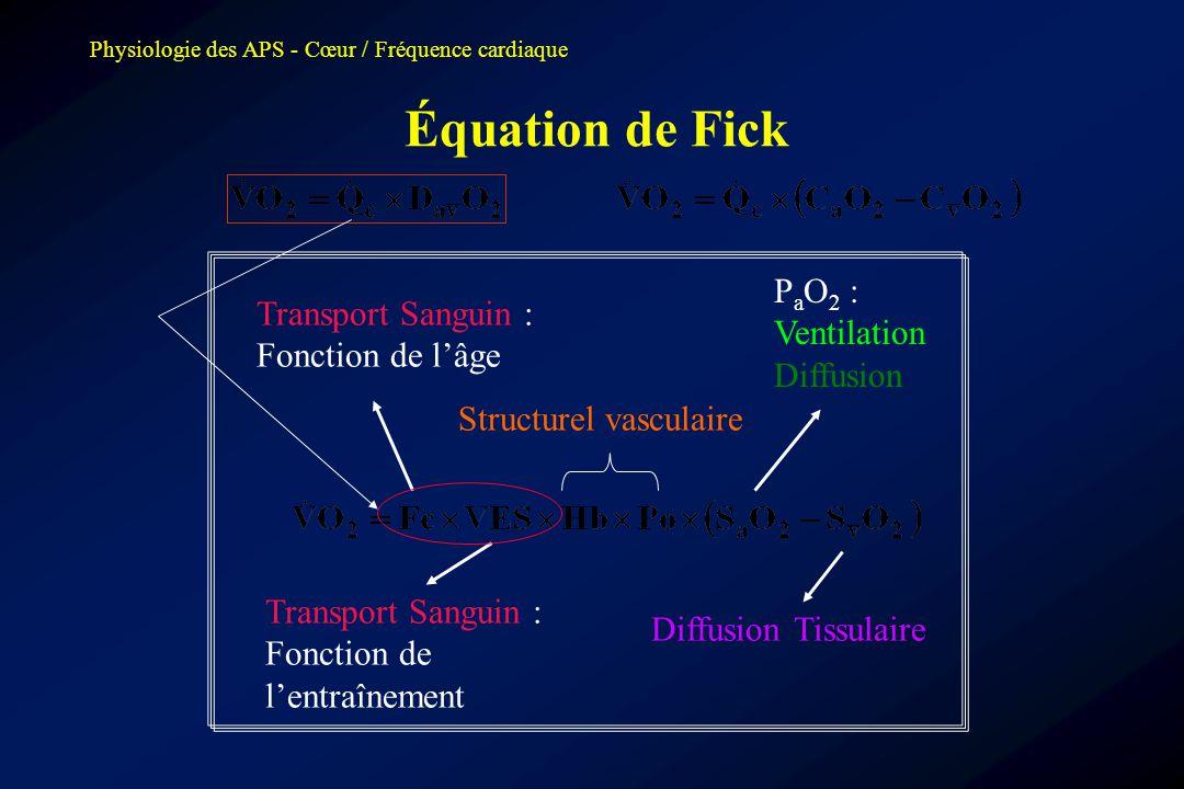 Physiologie des APS - Cœur / Fréquence cardiaque Équation de Fick Transport Sanguin : Fonction de l'âge Transport Sanguin : Fonction de l'entraînement