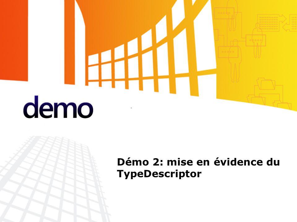 Les sources de données, personnalisation de la vue d'un objet L'interface ICustomTypeDescriptor GetProperties() permet la réécriture de la vue d'un objet propriété par propriété.