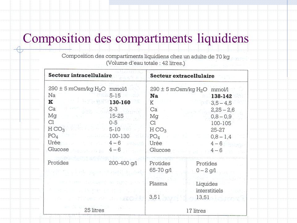 Composition des compartiments liquidiens