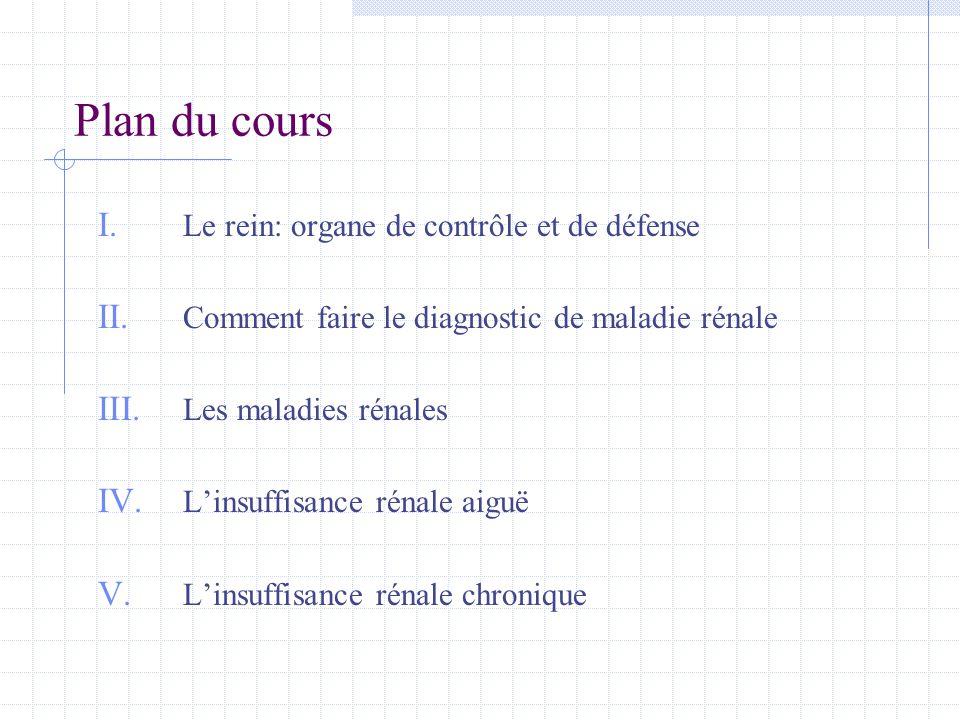 Plan du cours I. Le rein: organe de contrôle et de défense II. Comment faire le diagnostic de maladie rénale III. Les maladies rénales IV. L'insuffisa