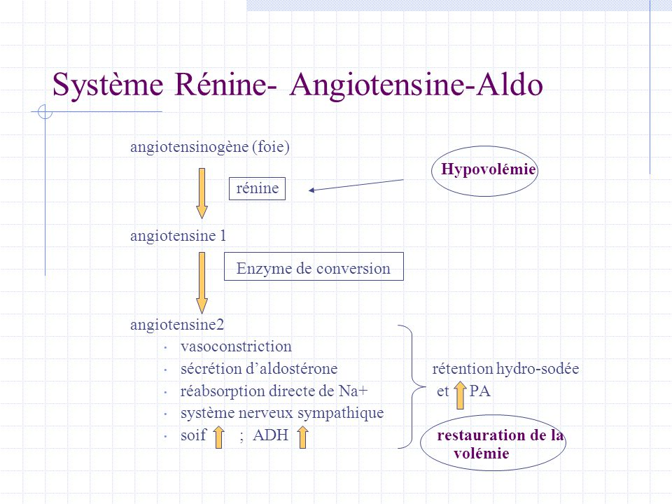 Système Rénine- Angiotensine-Aldo angiotensinogène (foie) Hypovolémie angiotensine 1 angiotensine2 • vasoconstriction • sécrétion d'aldostérone rétent