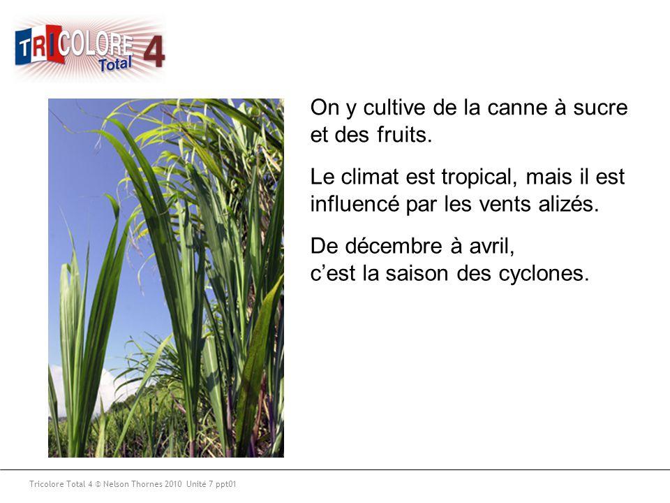 Tricolore Total 4 © Nelson Thornes 2010 Unité 7 ppt01 On y cultive de la canne à sucre et des fruits. Le climat est tropical, mais il est influencé pa