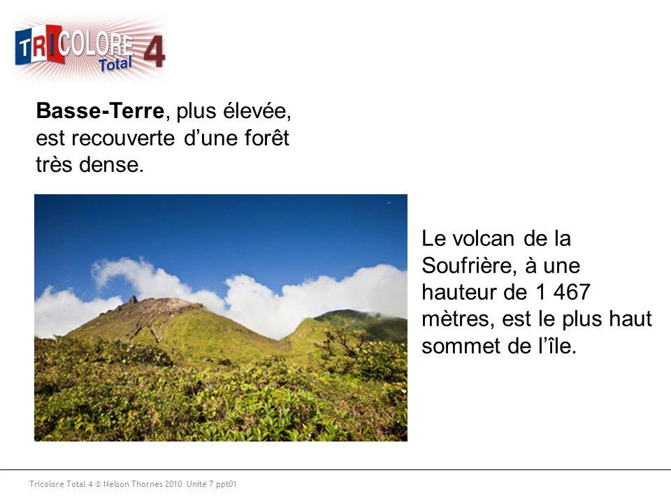 Tricolore Total 4 © Nelson Thornes 2010 Unité 7 ppt01 Basse-Terre, plus élevée, est recouverte d'une forêt très dense. Le volcan de la Soufrière, à un