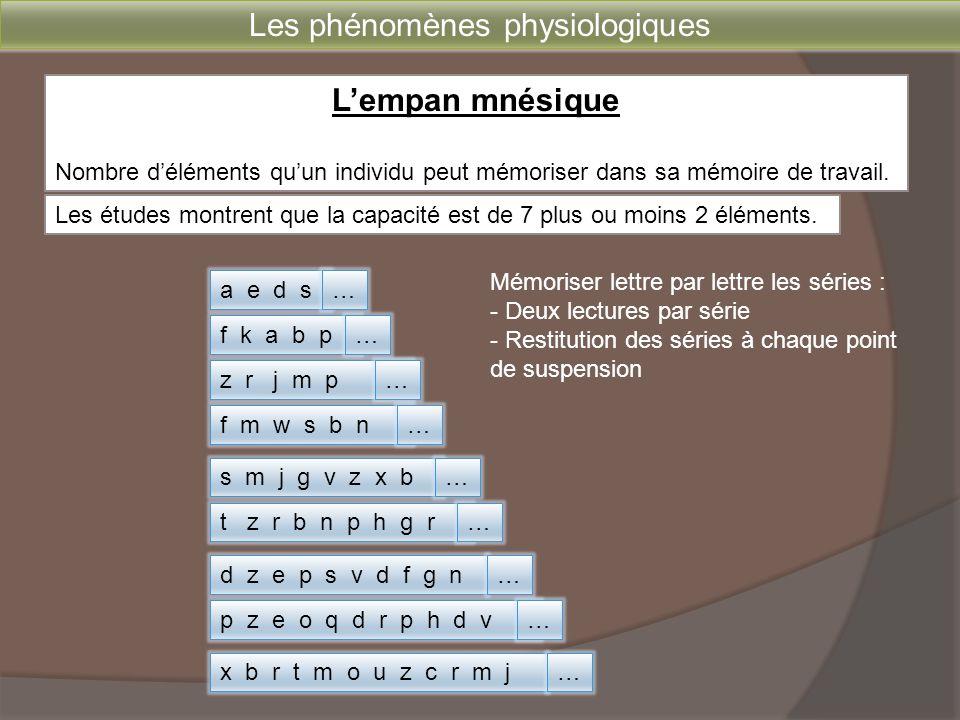 L'empan mnésique Nombre d'éléments qu'un individu peut mémoriser dans sa mémoire de travail. x b r t m o u z c r m j a e d s f k a b p z r j m p f m w
