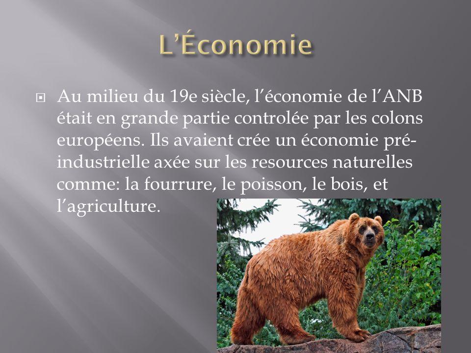  Au milieu du 19e siècle, l'économie de l'ANB était en grande partie controlée par les colons européens. Ils avaient crée un économie pré- industriel