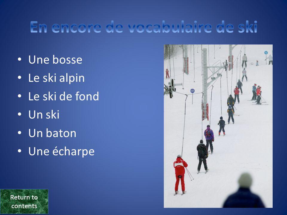 • Une station de sport d'hiver • Une montagne • Un sommet • Un skieur, une skieuse • Un(e) débutant(e) • Un télésiège • Une piste Return to contents Return to contents
