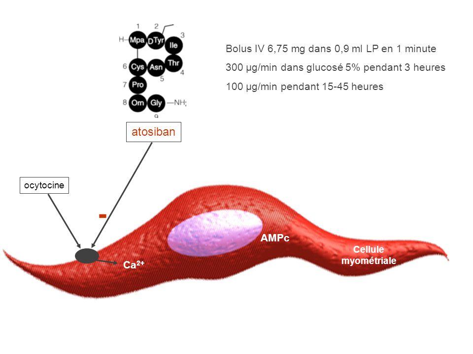 Cellule myométriale Ca 2+ AMPc - ocytocine atosiban Bolus IV 6,75 mg dans 0,9 ml LP en 1 minute 300 µg/min dans glucosé 5% pendant 3 heures 100 µg/min pendant 15-45 heures