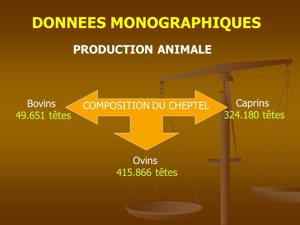 DONNEES MONOGRAPHIQUES PRODUCTION ANIMALE PRODUCTION L a i t 11.493 T Viande 6.302 T L a i n e 464 T M i e l 108 T
