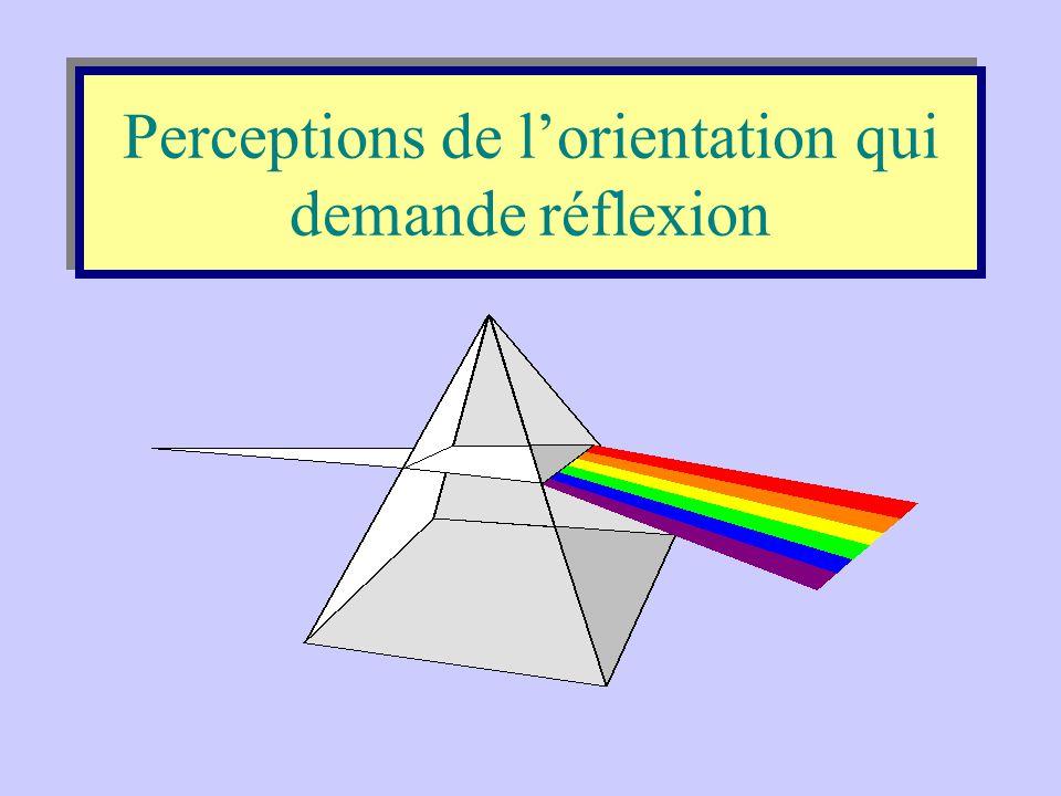 •Perceptions de l'orientation qui demandent réflexion; •Qu'est-ce que s'orienter? •Problèmes relevés; •Conséquences.