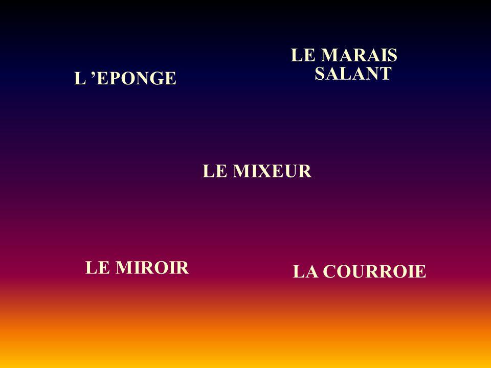 LE MARAIS SALANT L 'EPONGE LA COURROIE LE MIXEUR LE MIROIR