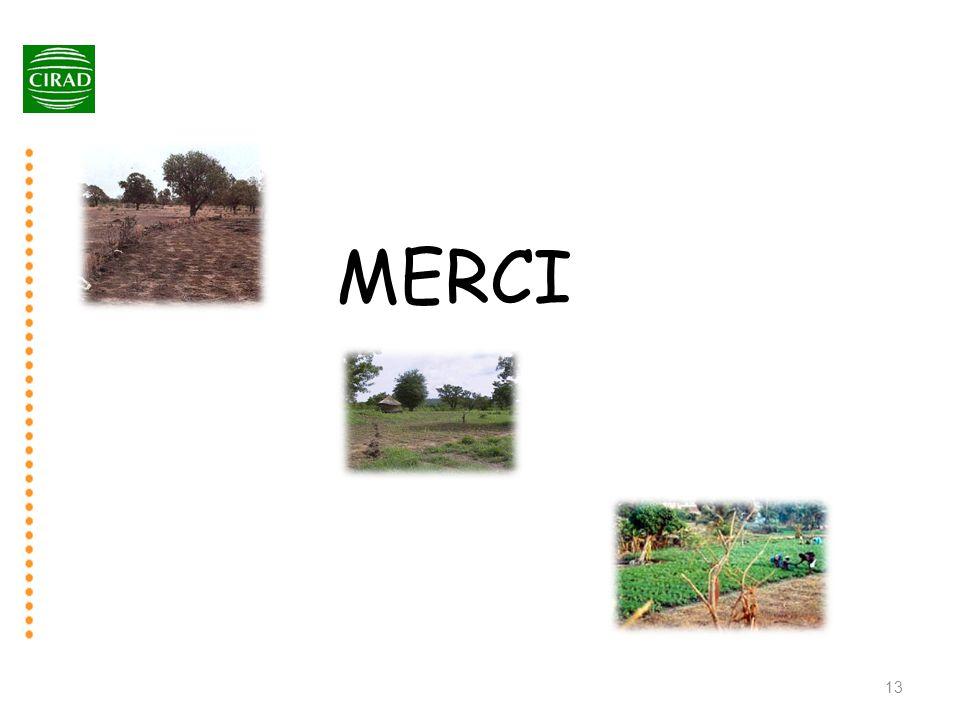 MERCI 13