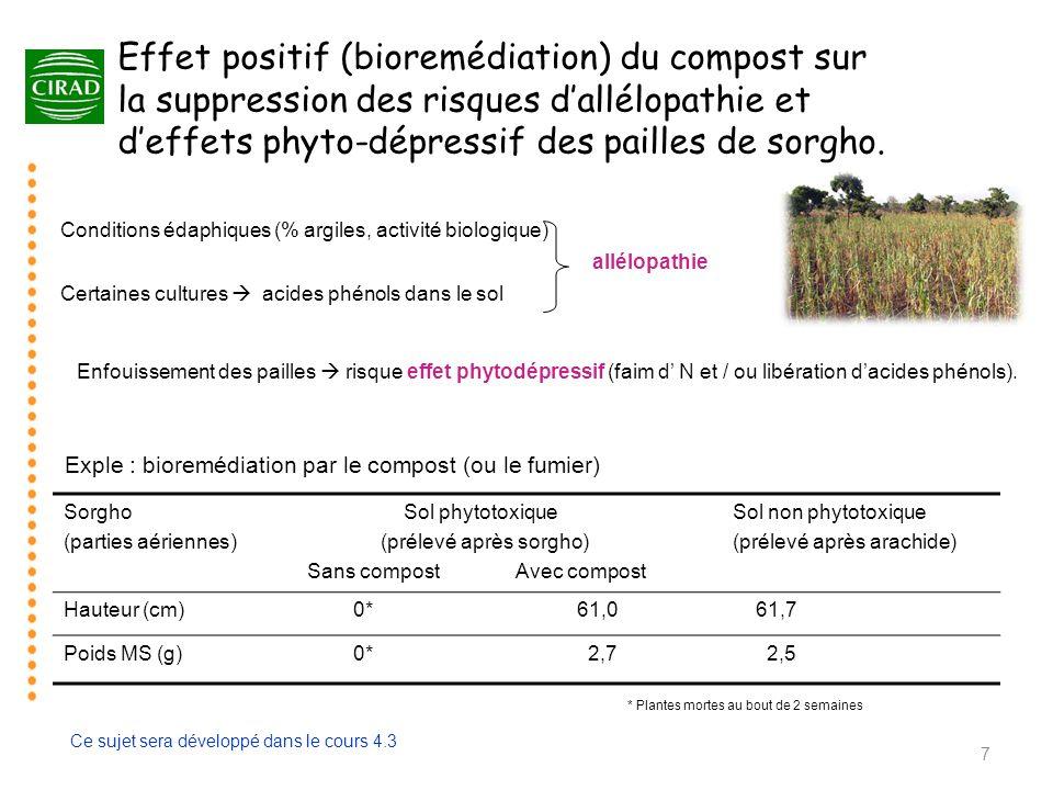 Effet positif (bioremédiation) du compost sur la suppression des risques d'allélopathie et d'effets phyto-dépressif des pailles de sorgho. Sorgho (par