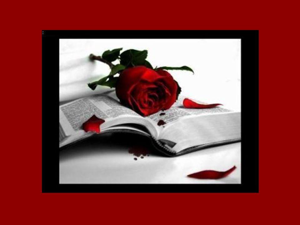 Si on compare la vieillesse à une rose fanée, cette rose fanée est parfois aussi belle que celle fraîchement éclose.