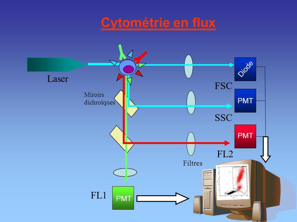 Cytométrie en flux FL1 FL2 SSC FSC Laser Miroirs dichroïques Filtres PMT Diode