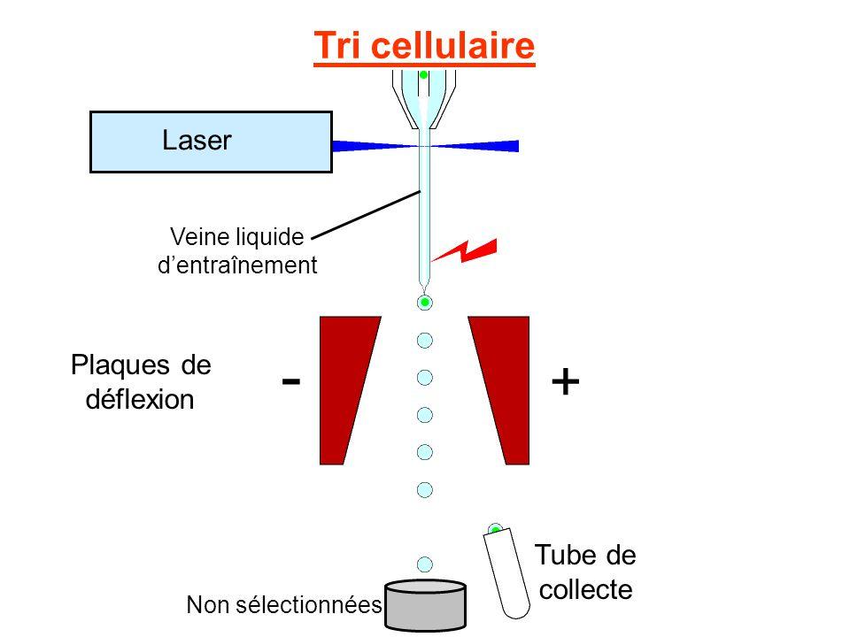 - + Tri cellulaire Tube de collecte Laser Plaques de déflexion Veine liquide d'entraînement Non sélectionnées