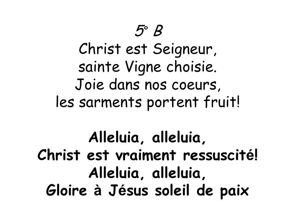 5° B Christ est Seigneur, sainte Vigne choisie. Joie dans nos coeurs, les sarments portent fruit! Alleluia, alleluia, Christ est vraiment ressuscit é