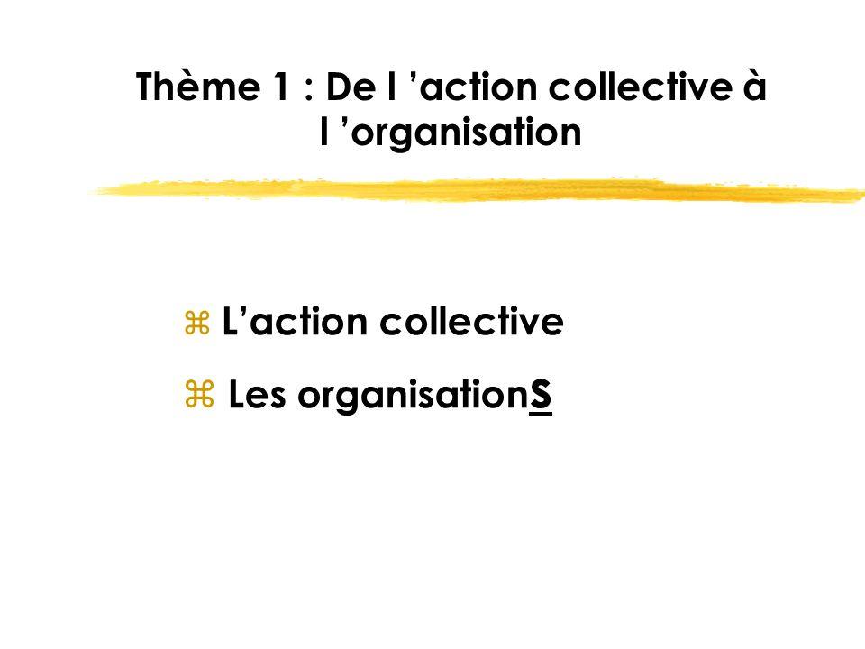 Thème 1 : De l 'action collective à l 'organisation z L'action collective z Les organisation s