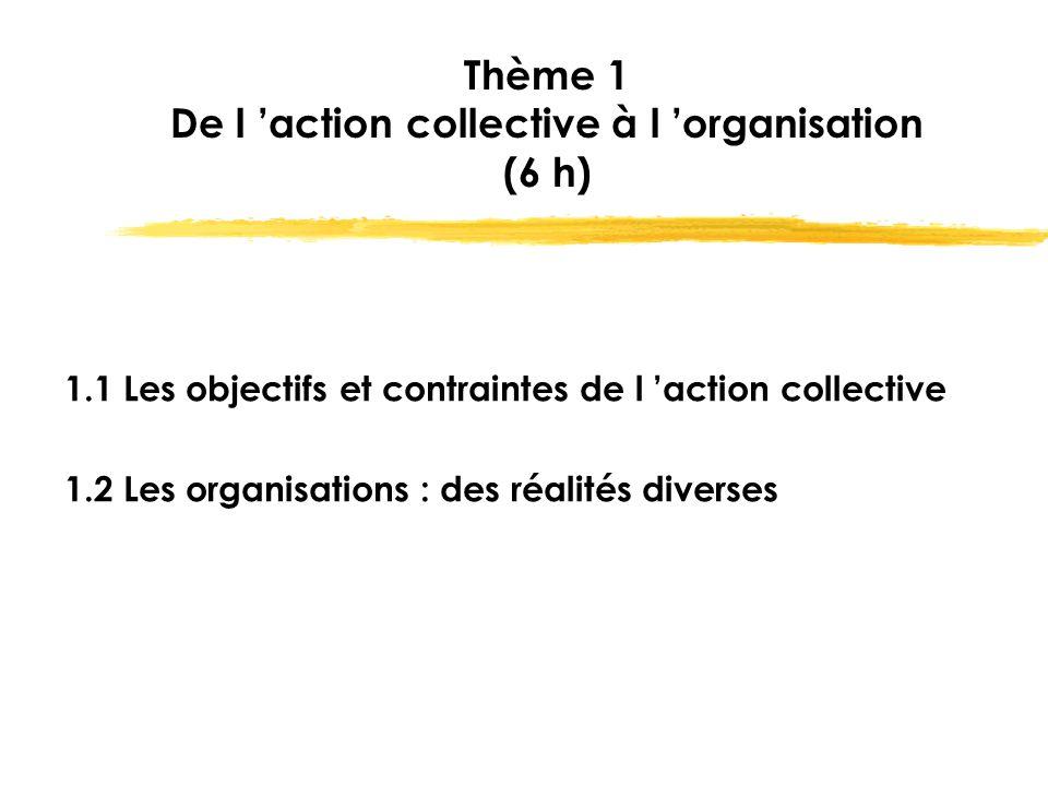Thème 1 De l 'action collective à l 'organisation (6 h) 1.1 Les objectifs et contraintes de l 'action collective 1.2 Les organisations : des réalités