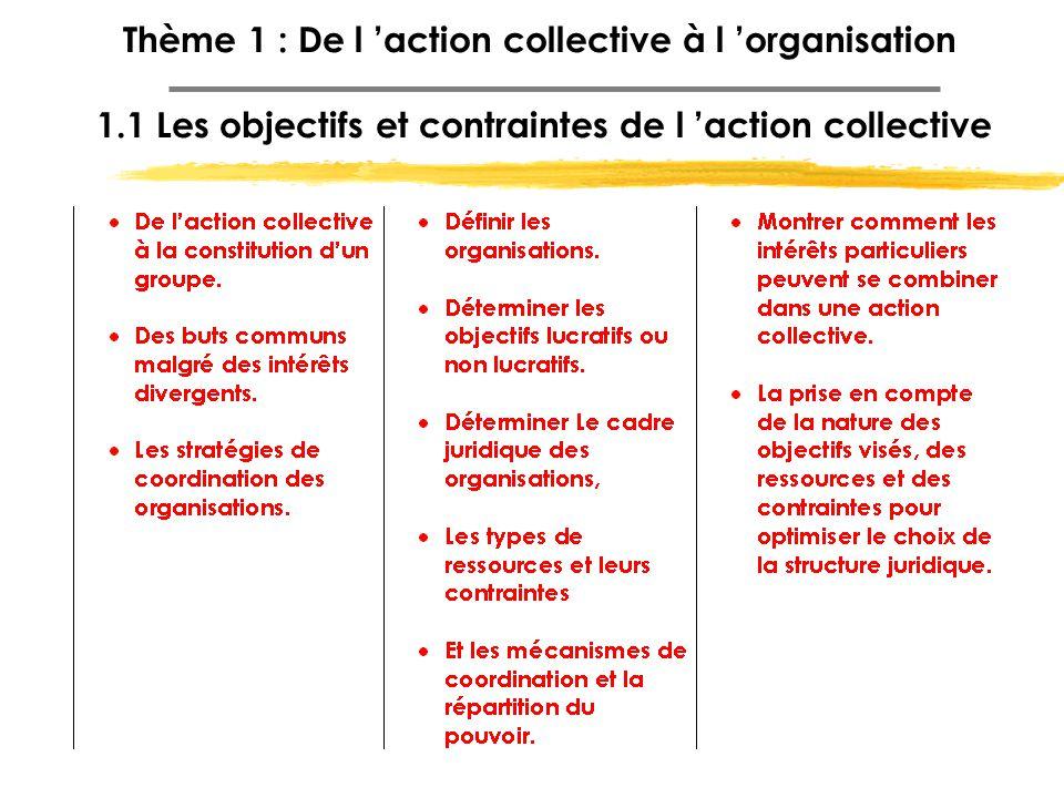 Thème 1 : De l 'action collective à l 'organisation 1.1 Les objectifs et contraintes de l 'action collective