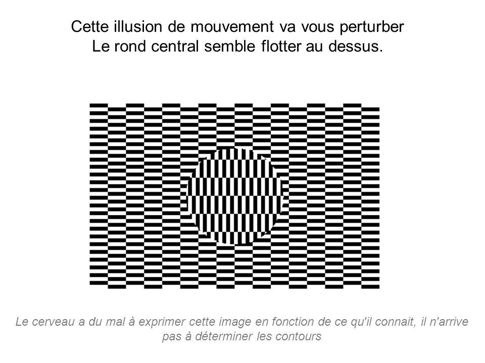 Le cerveau a du mal à exprimer cette image en fonction de ce qu'il connait, il n'arrive pas à déterminer les contours Cette illusion de mouvement va v