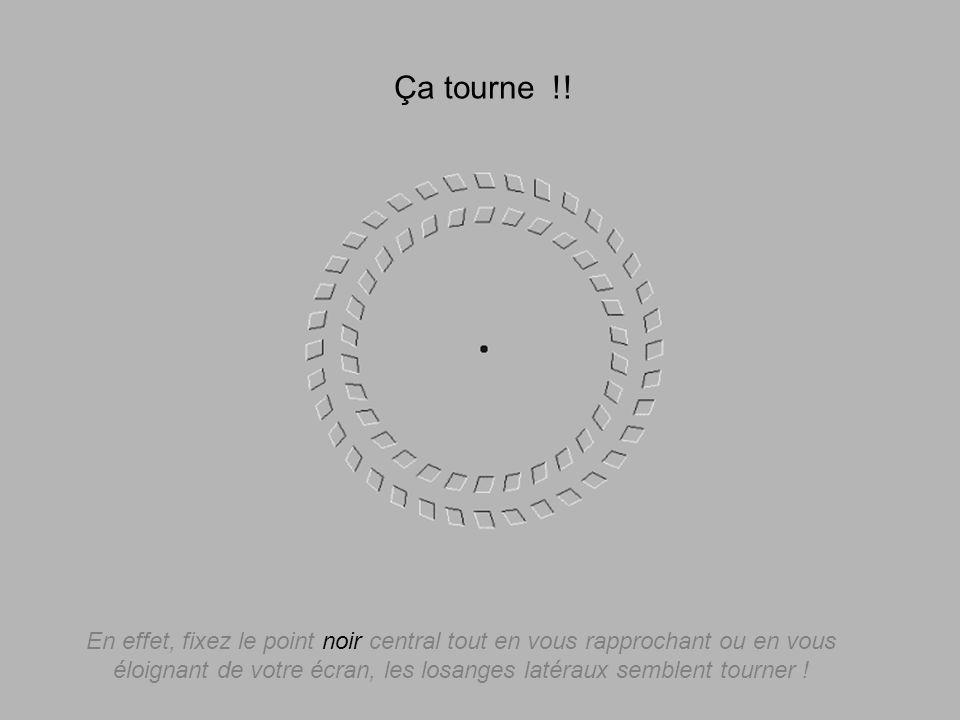 En effet, fixez le point noir central tout en vous rapprochant ou en vous éloignant de votre écran, les losanges latéraux semblent tourner ! Ça tourne