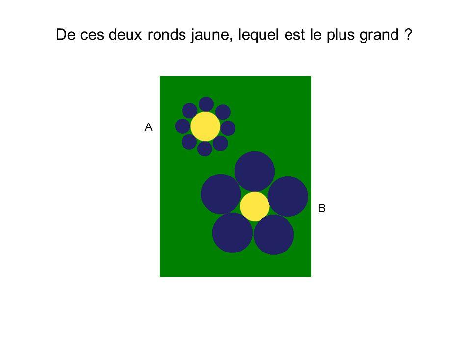 Ils sont de même diamètre.(A=B) De ces deux ronds jaune, lequel est le plus grand .