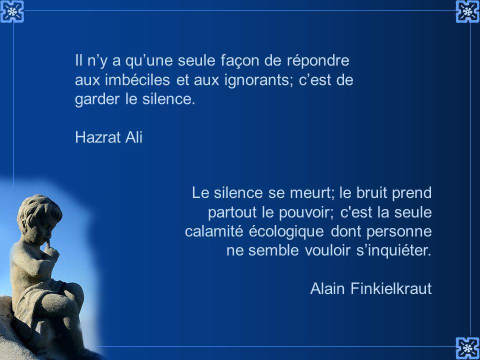 Il n'y a qu'une seule façon de répondre aux imbéciles et aux ignorants; c'est de garder le silence.