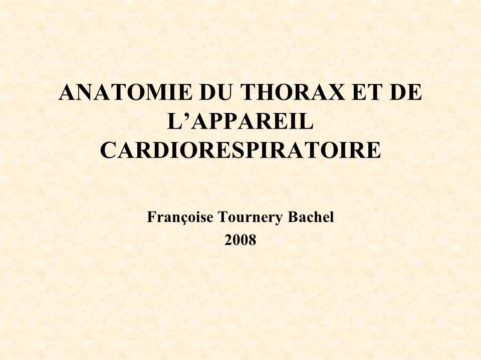 ANATOMIE DU THORAX ET DE L'APPAREIL CARDIORESPIRATOIRE Françoise Tournery Bachel 2008