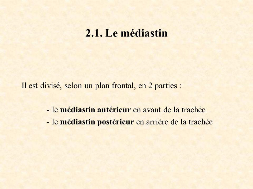 2.1. Le médiastin Il est divisé, selon un plan frontal, en 2 parties : - le médiastin antérieur en avant de la trachée - le médiastin postérieur en ar