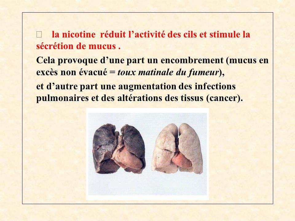  la nicotine réduit l'activité des cils et stimule la sécrétion de mucus. Cela provoque d'une part un encombrement (mucus en excès non évacué = toux