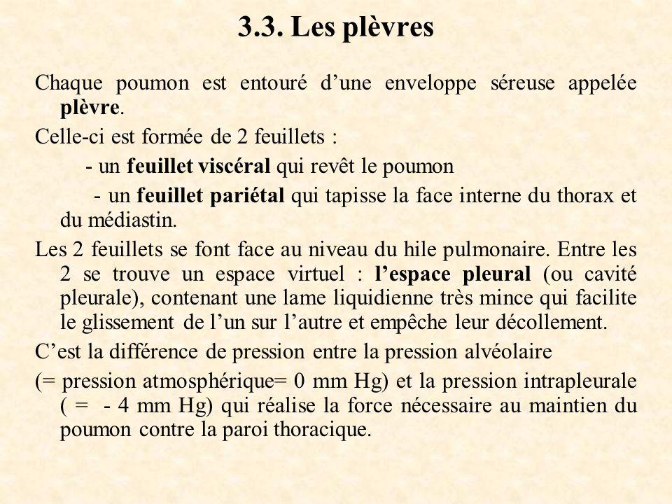 3.3. Les plèvres Chaque poumon est entouré d'une enveloppe séreuse appelée plèvre. Celle-ci est formée de 2 feuillets : - un feuillet viscéral qui rev
