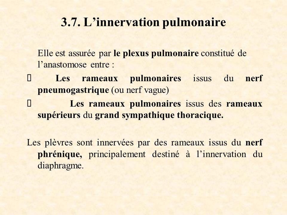 3.7. L'innervation pulmonaire Elle est assurée par le plexus pulmonaire constitué de l'anastomose entre :  Les rameaux pulmonaires issus du nerf pneu