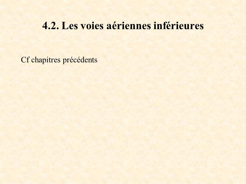 4.2. Les voies aériennes inférieures Cf chapitres précédents