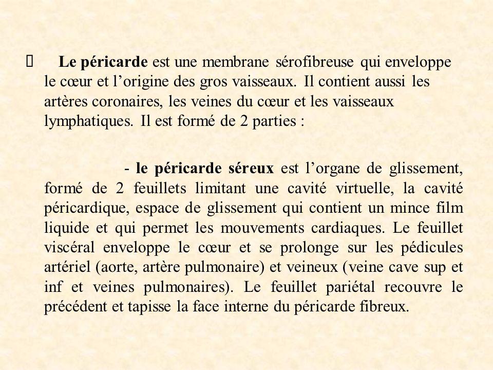  Le péricarde est une membrane sérofibreuse qui enveloppe le cœur et l'origine des gros vaisseaux. Il contient aussi les artères coronaires, les vein