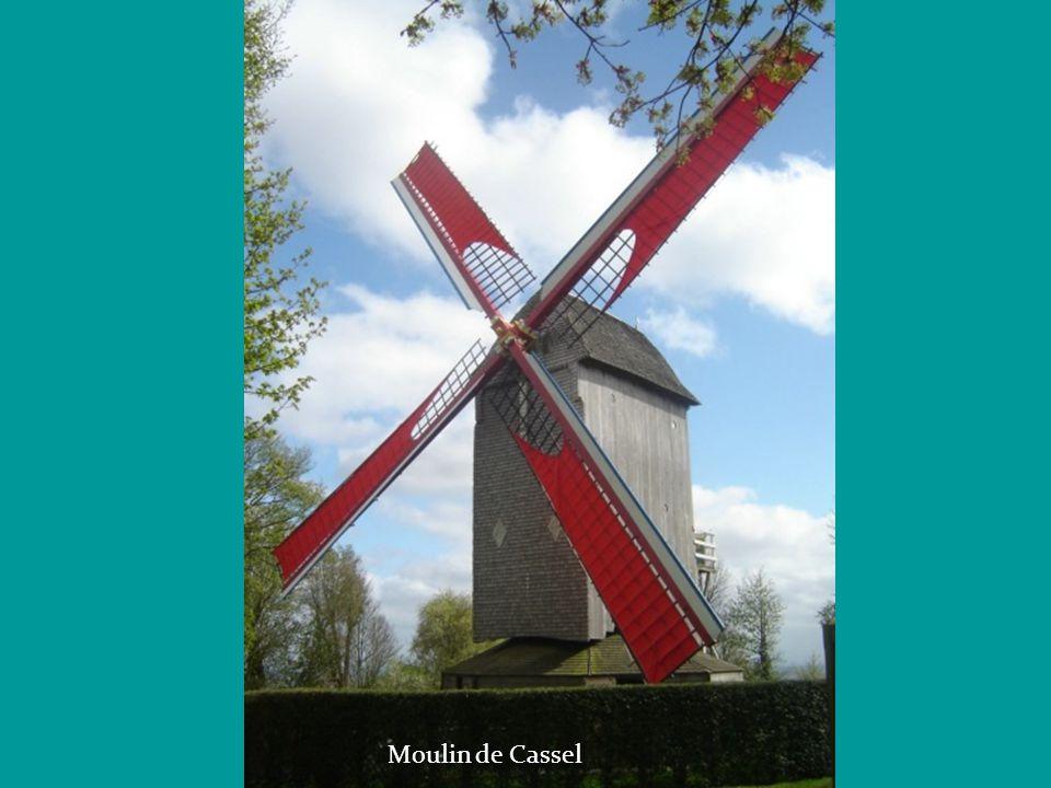 Roue du Moulin de Maroilles